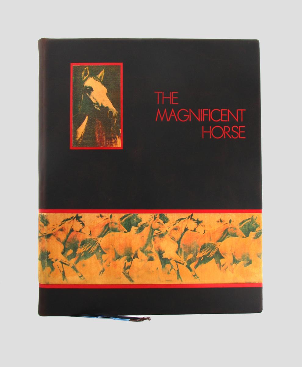 Magnificent Horse oprawa artystyczna