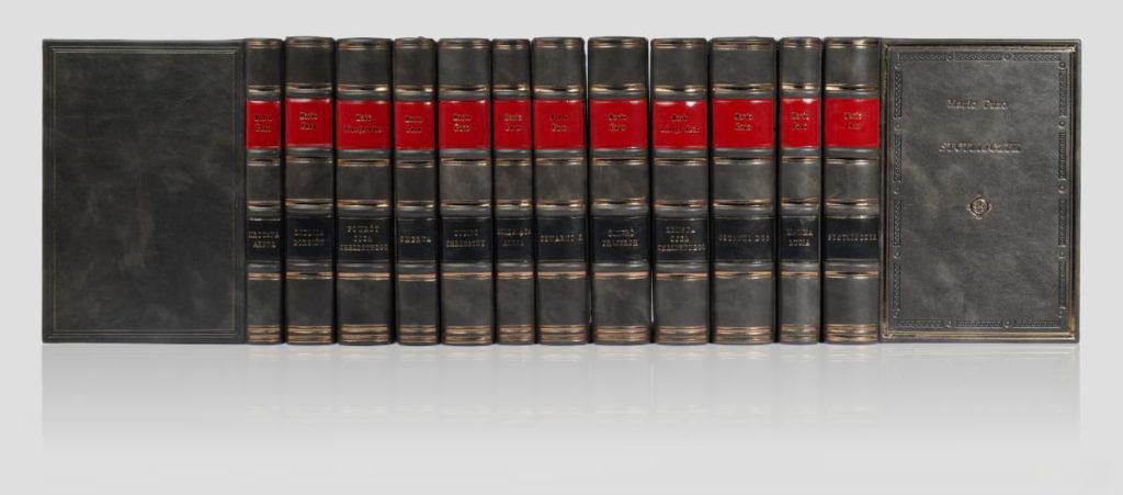 Biblioteka prywatna Puzo Mario, zbiór dzieł