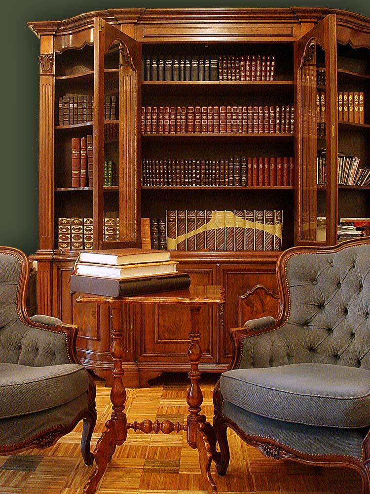 Biblioteka domowa, Księgozbiór gabinetowy, Kolekcja książek