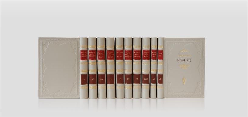 Polish Language Dictionaries - Słowniki języka polskiego - home library - biblioteka domowa- biblioteka gabinetowa - collector's edition