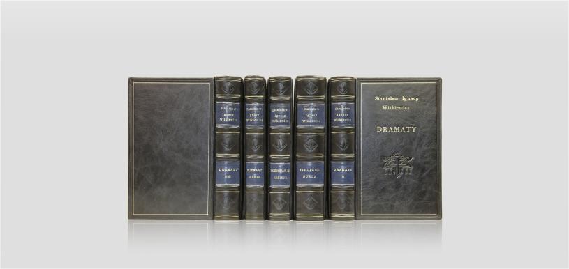 Witkiewicz Stanisław Ignacy — Works - collector's edition - fine leather binding - artistic book - classic style binding - home library